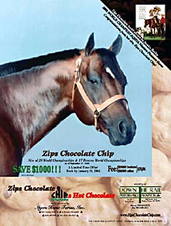 Zips Chocolate Chip 2003 Journal Ad