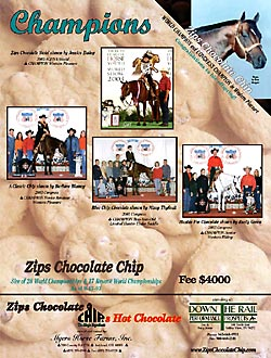 Zips Chocolate Chip 2004 Journal Ad